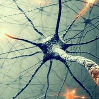 Нейросифилис — причины, симптомы болезни, диагностика, профилактика и леченение нейросифилиса у женщин и мужчин